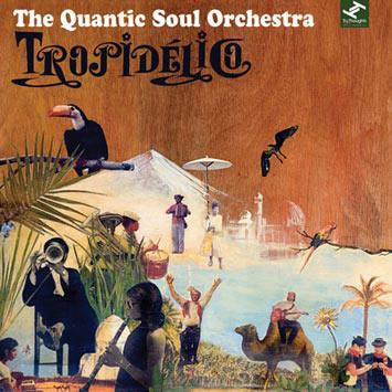 Quantic Soul Orchestra Tropidelico 2008 Tour