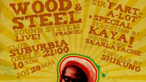 Reggae party Wood And Steel