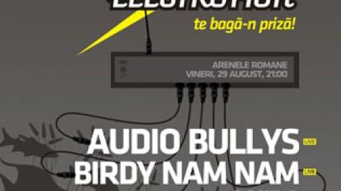 Birdy Nam Nam si Audio Bullys
