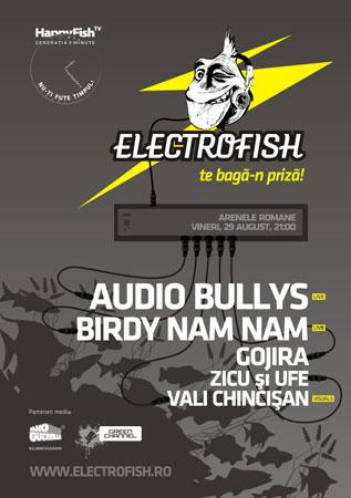 electrofish-audio-bullys-birdy-nam-nam