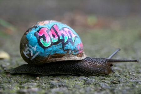 snail-london
