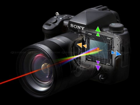Sony Alpha 900 preview