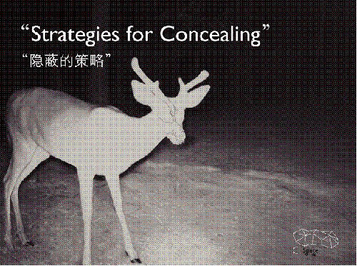 strategies-for-concealing