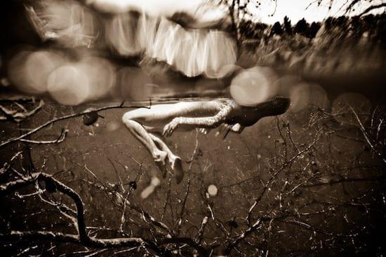 Neil Craver Photography