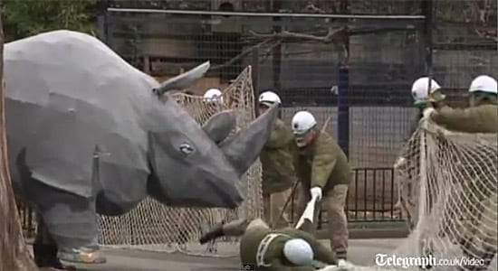 O gramada de politisti japonezi s-au chinuit sa prinda un masiv rinocer... de hartie :)