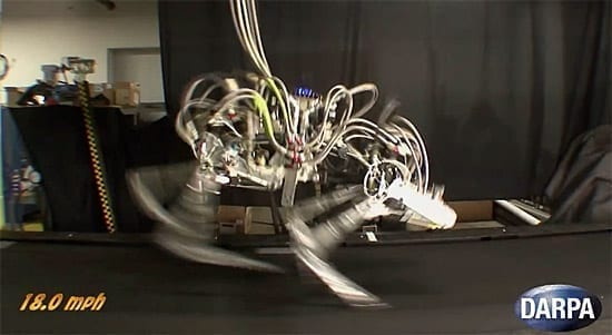 Record: Robotul Cheetah alearga cu 30 km/h!