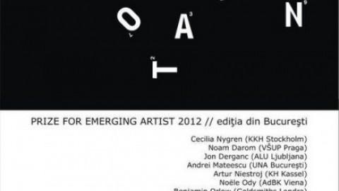 Prize for Emerging Artist 2012