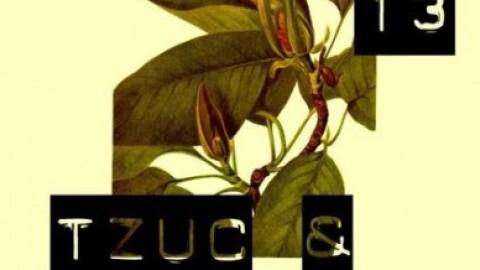 Tzuc & Dragos R