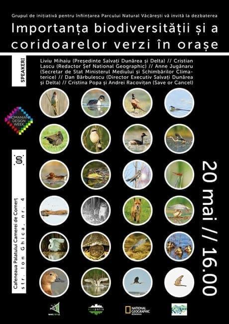 Importanța biodiversității și a coridoarelor verzi în orașe @ Romanian Design Week