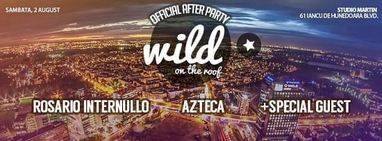 Official After Party - Wild on the Roof @ Studio Martin
