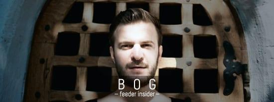 feeder insider w/ Bog