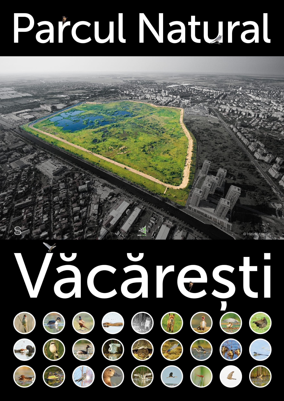 Parc Natural Văcărești București