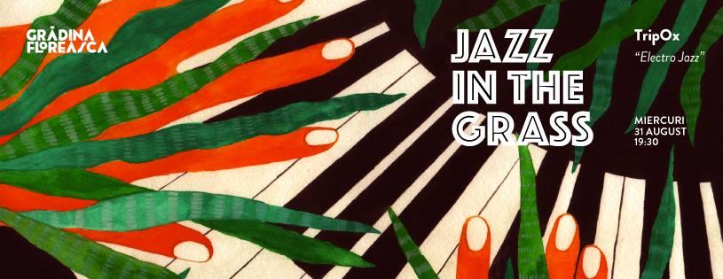 Trip-OX Electro Jazz @ Jazz in the grass