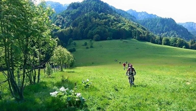 Alpin Bike