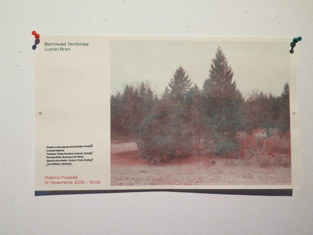 Borrowed Territories by Lucian Bran @ Galeria Posibilă