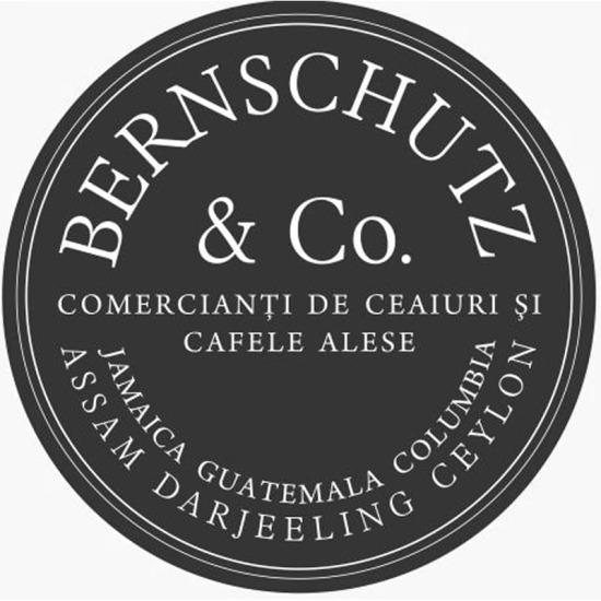Bernschutz logo