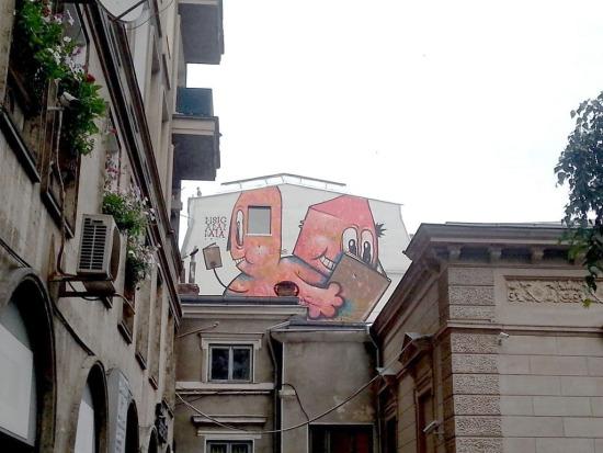 2014 Pisica Patrata Street Delivery carturesti 2