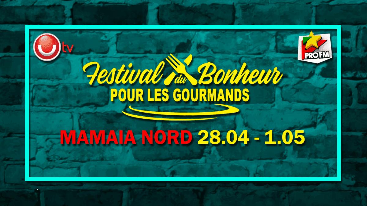 Festival du Bonheur Afis Landscape