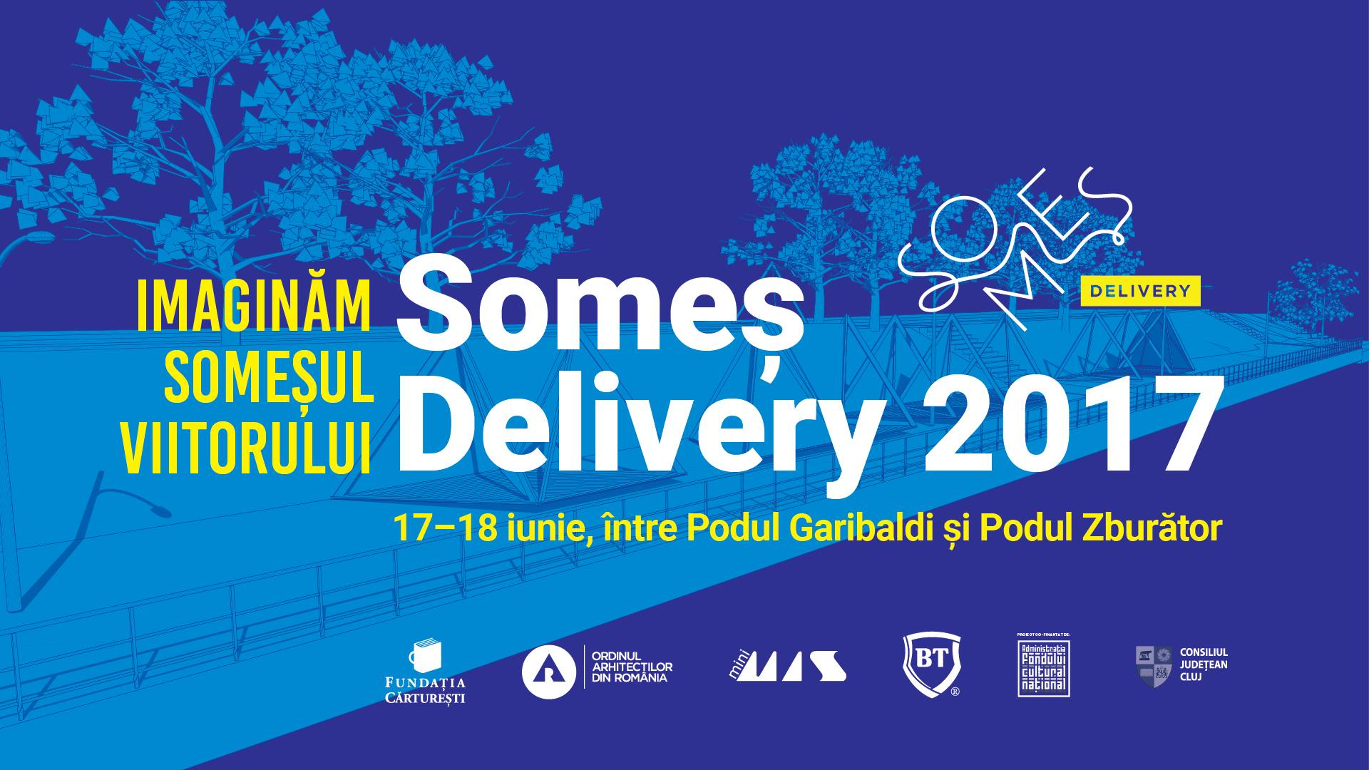 Someș Delivery 2017