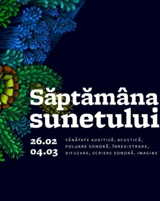 Video art & showcase Simultan