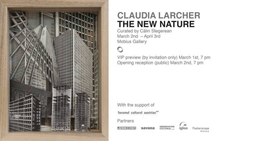 claudia larcher mobius gallery