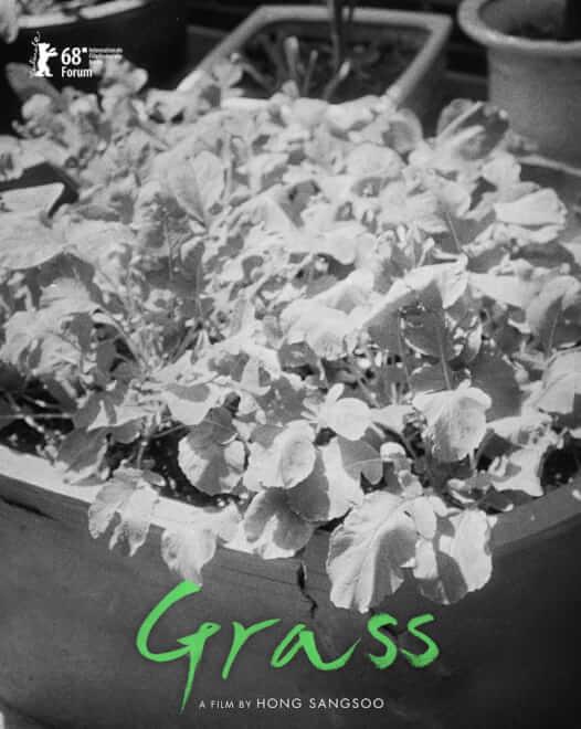 Grass a film by Hong Sang-soo