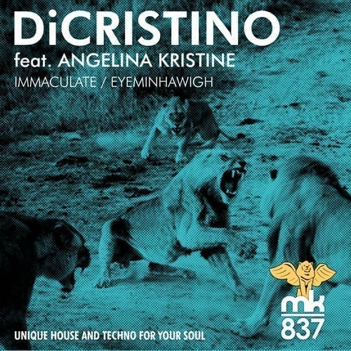 Brooklyn producer DiCristino joins mk837 with Immaculate / Eyeminhawigh