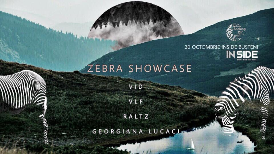 Zebra Showcase: Vid • Vlf • Raltz • Georgiana Lucaci
