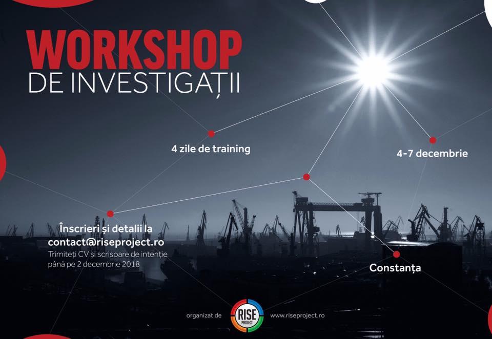 RISE Project - Workshop de investigații