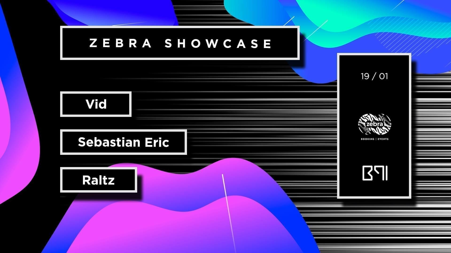 Zebra Showcase - Vid - Sebastian Eric - Raltz