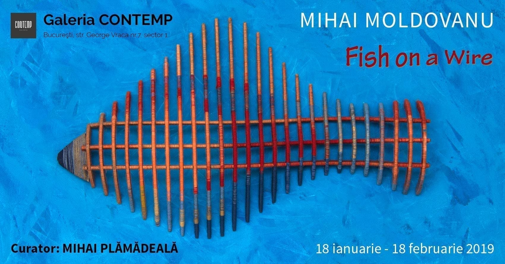 "Expoziția ""Fish on a Wire"" _ Mihai Moldovanu la Galeria Contemp"