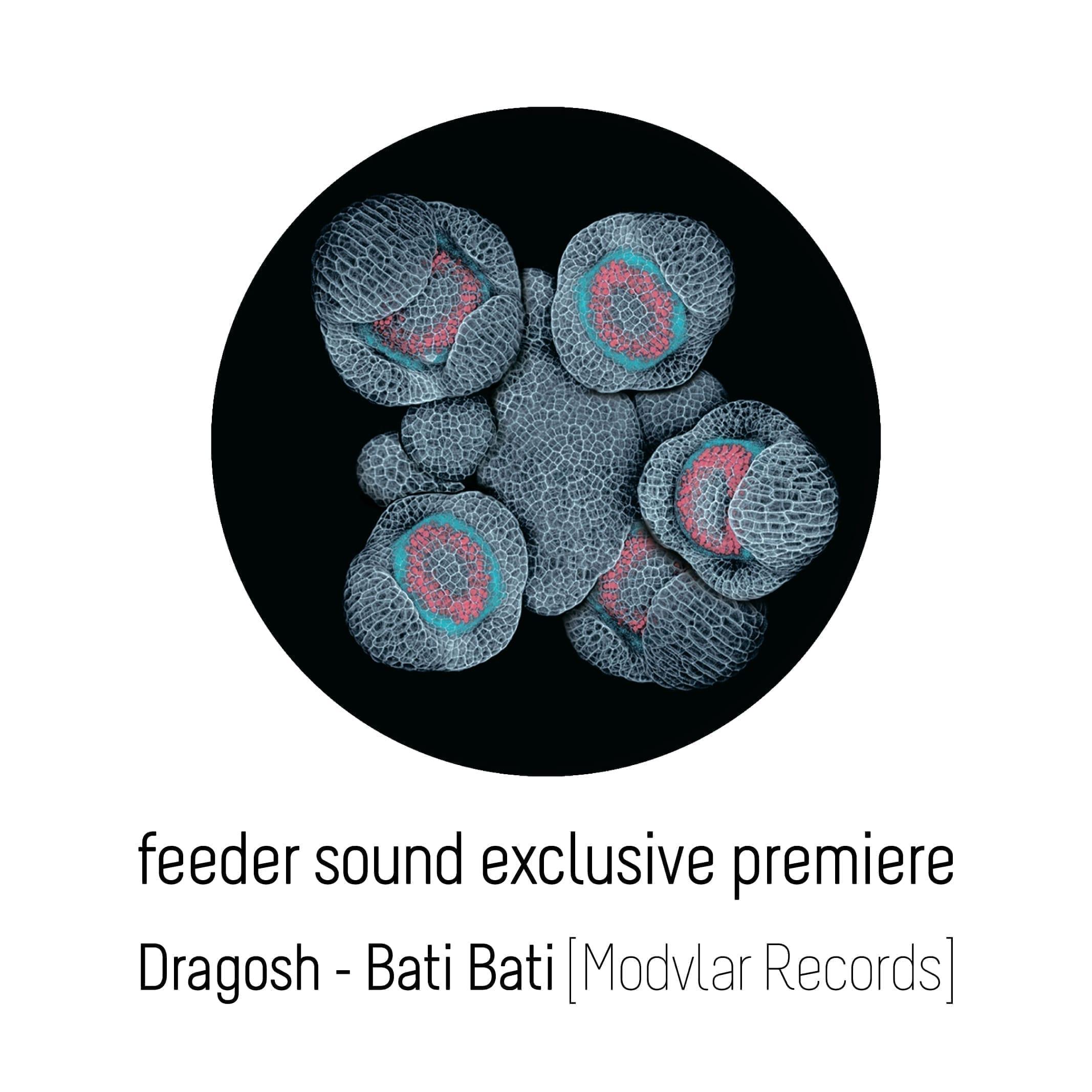 feeder sound exclusive premiere Dragosh Bati Bati