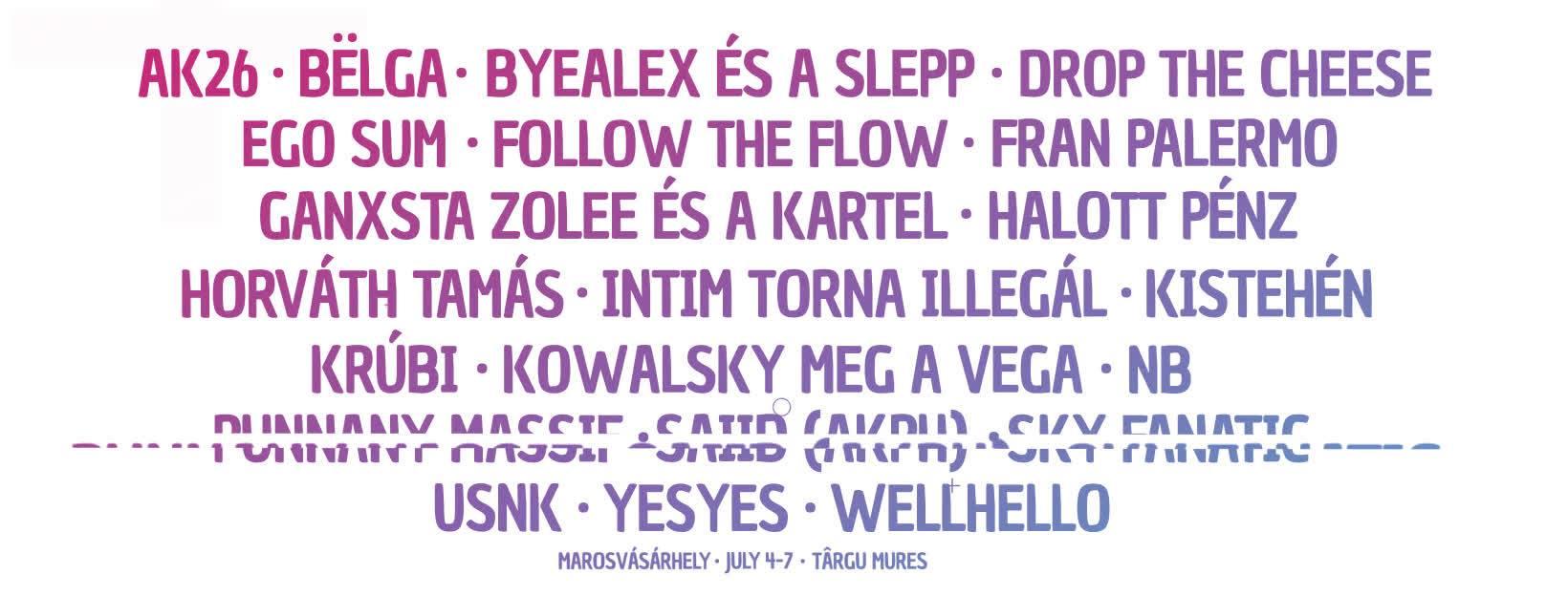 VIBE Festival 2019