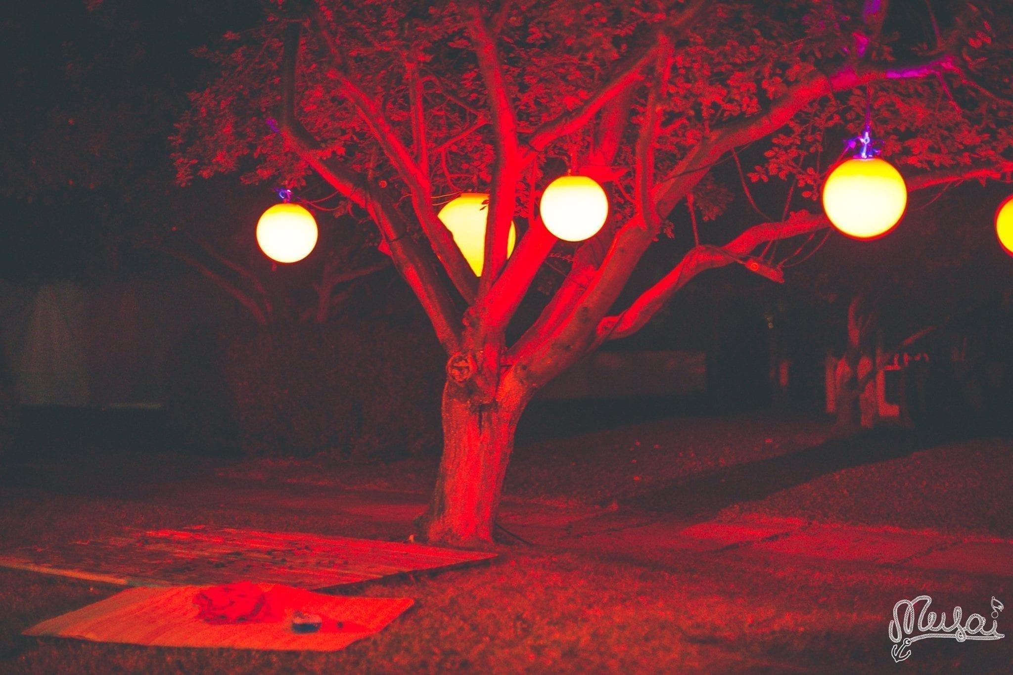 Musai Fest