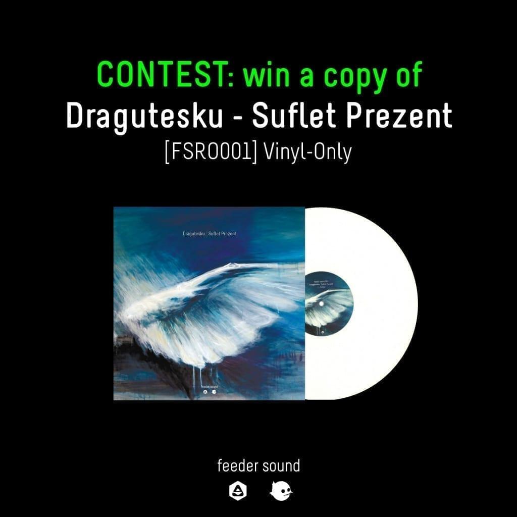 contest Dragutesku - Suflet Prezent