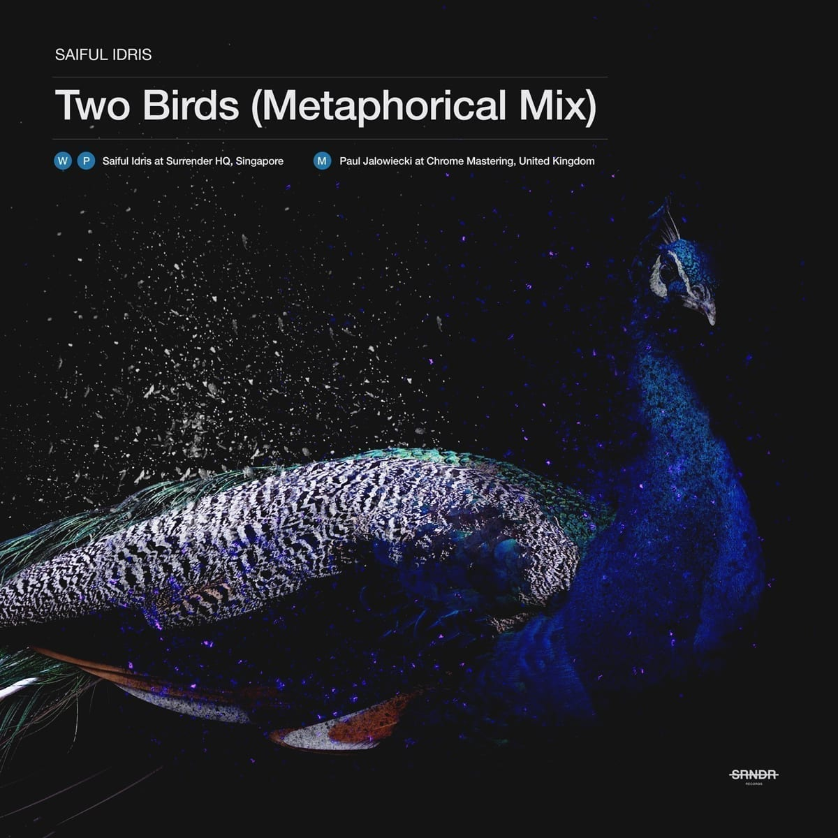 """Saiful Idris is back with """"Two Birds (Metaphorical Mix)"""""""