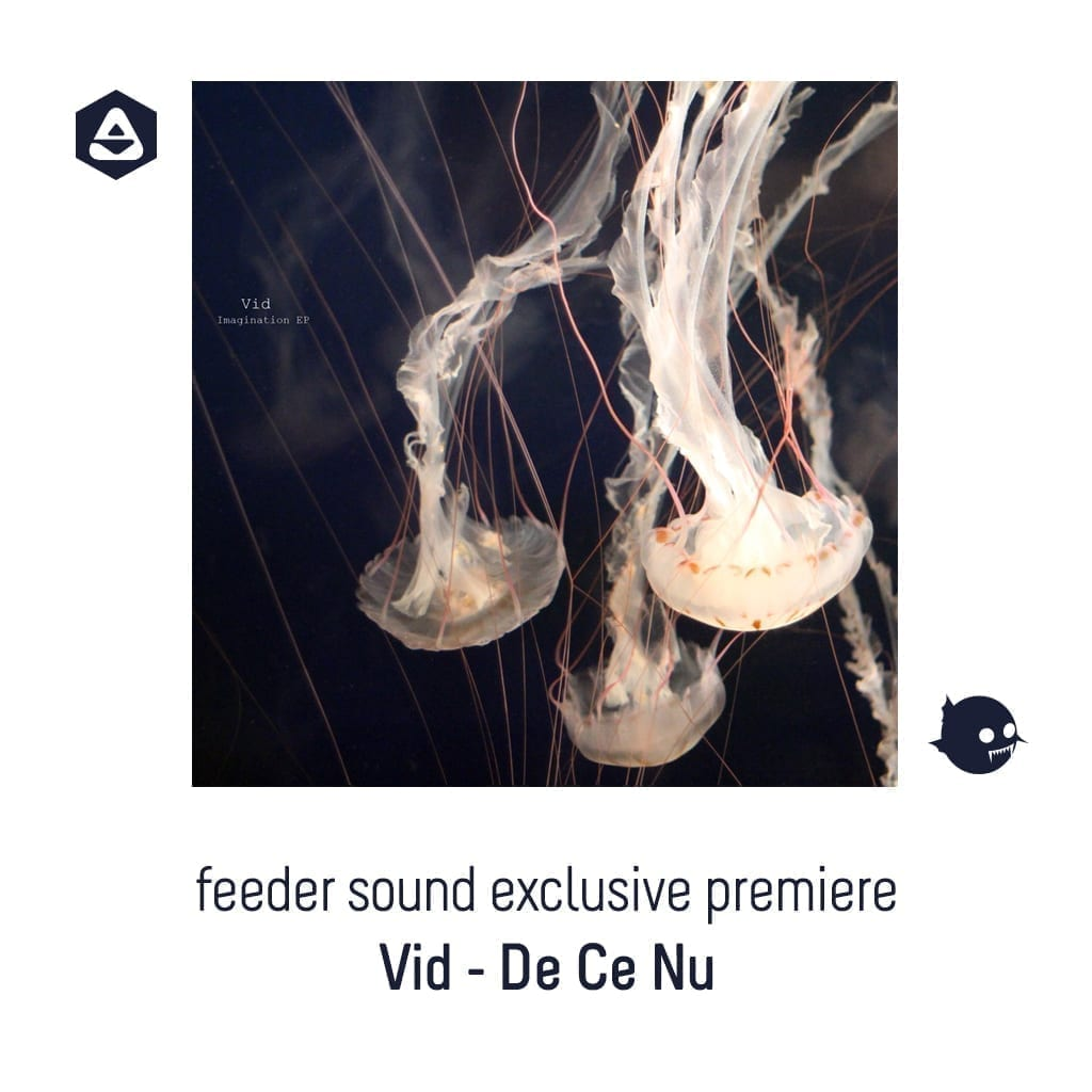 feeder sound exclusive premiere: Vid - De Ce Nu cover
