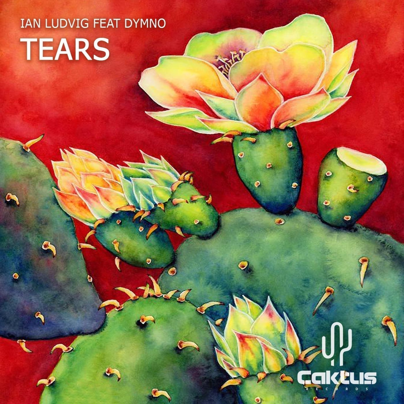 """Ian Ludvig teams up with Dymno to present you a new job titled """"Tears"""""""