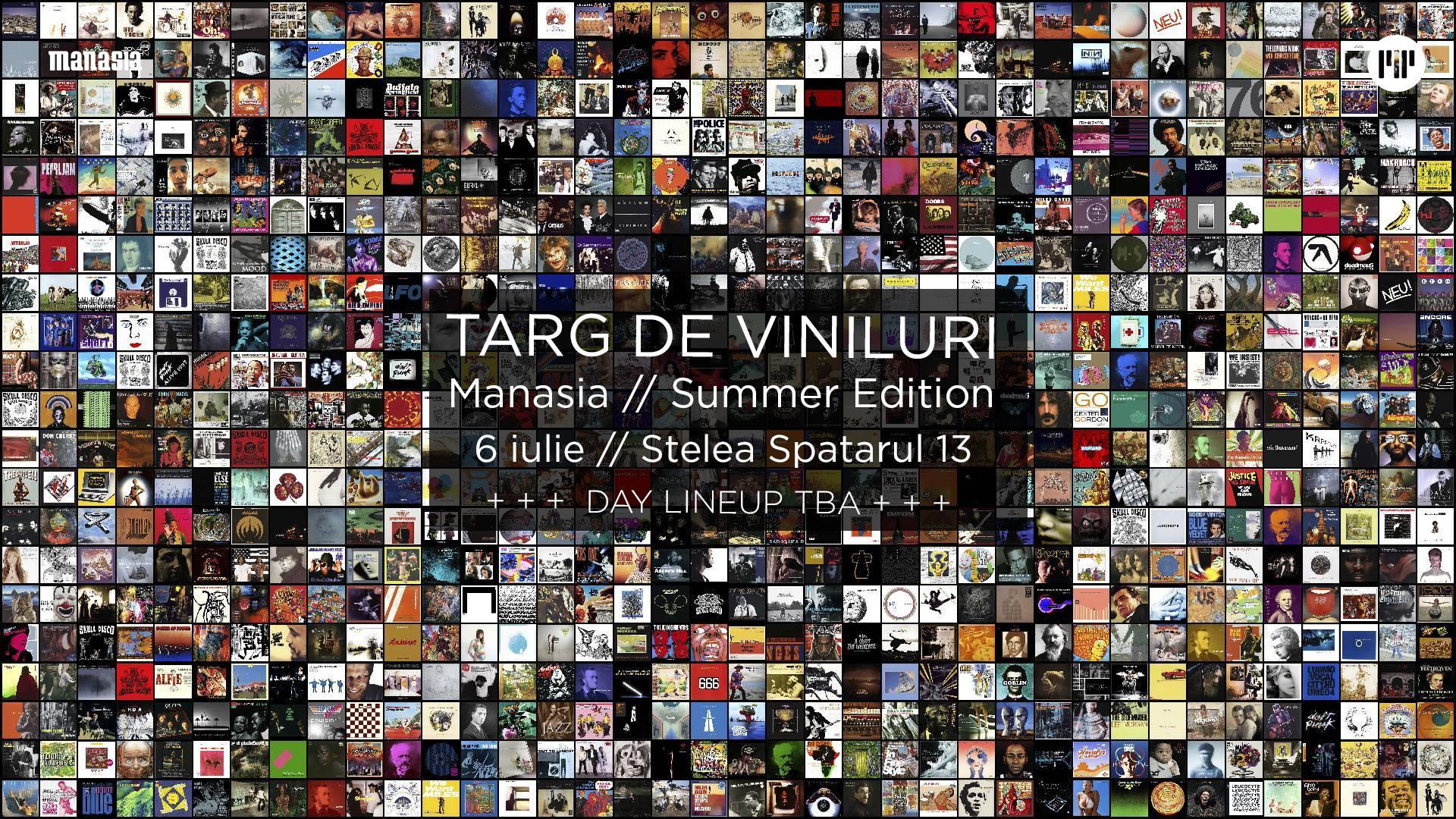 Targ de Viniluri @ Manasia // Summer Edition