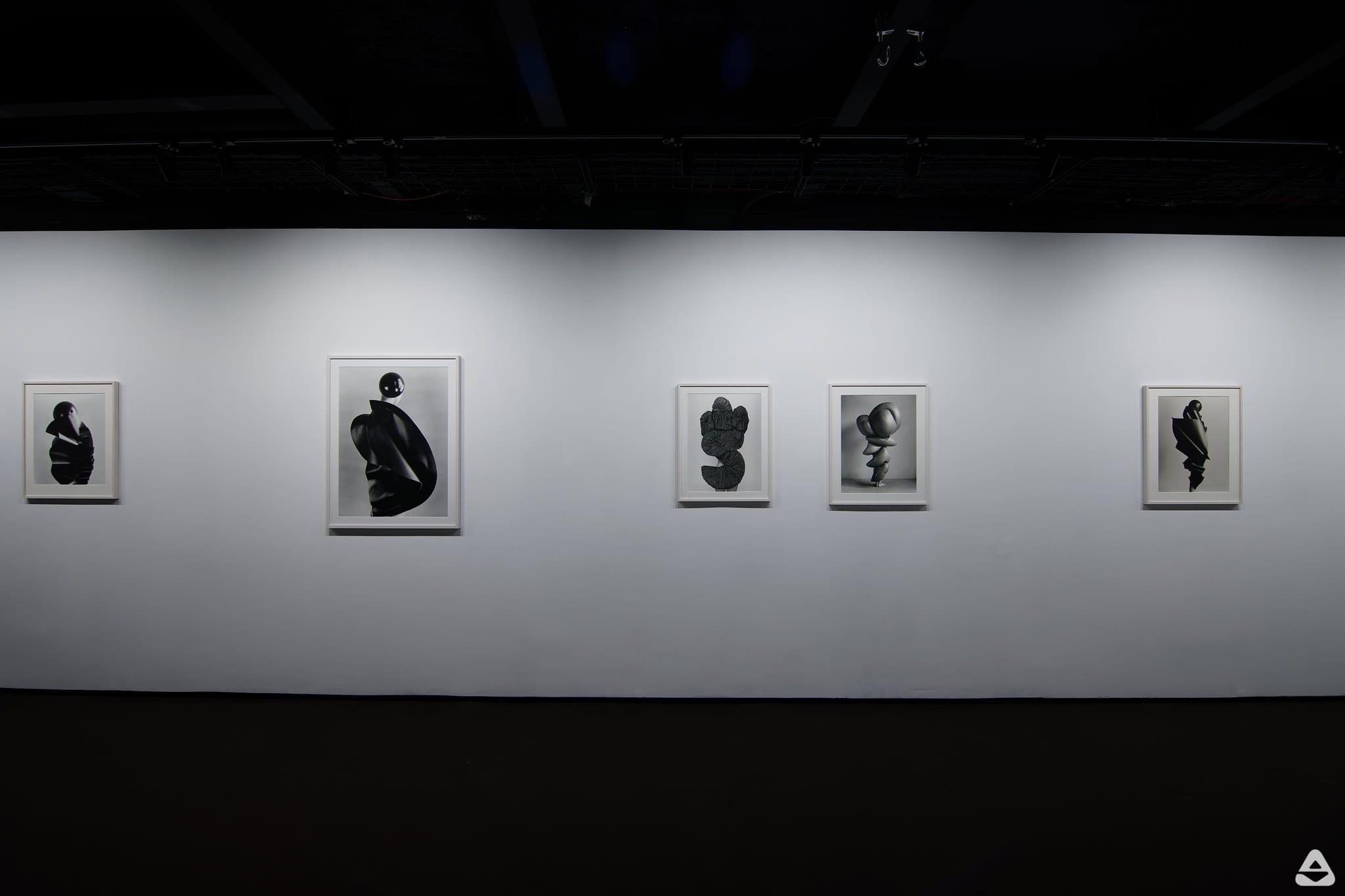 Tina Lechner @ Mobius Gallery NAG 2019