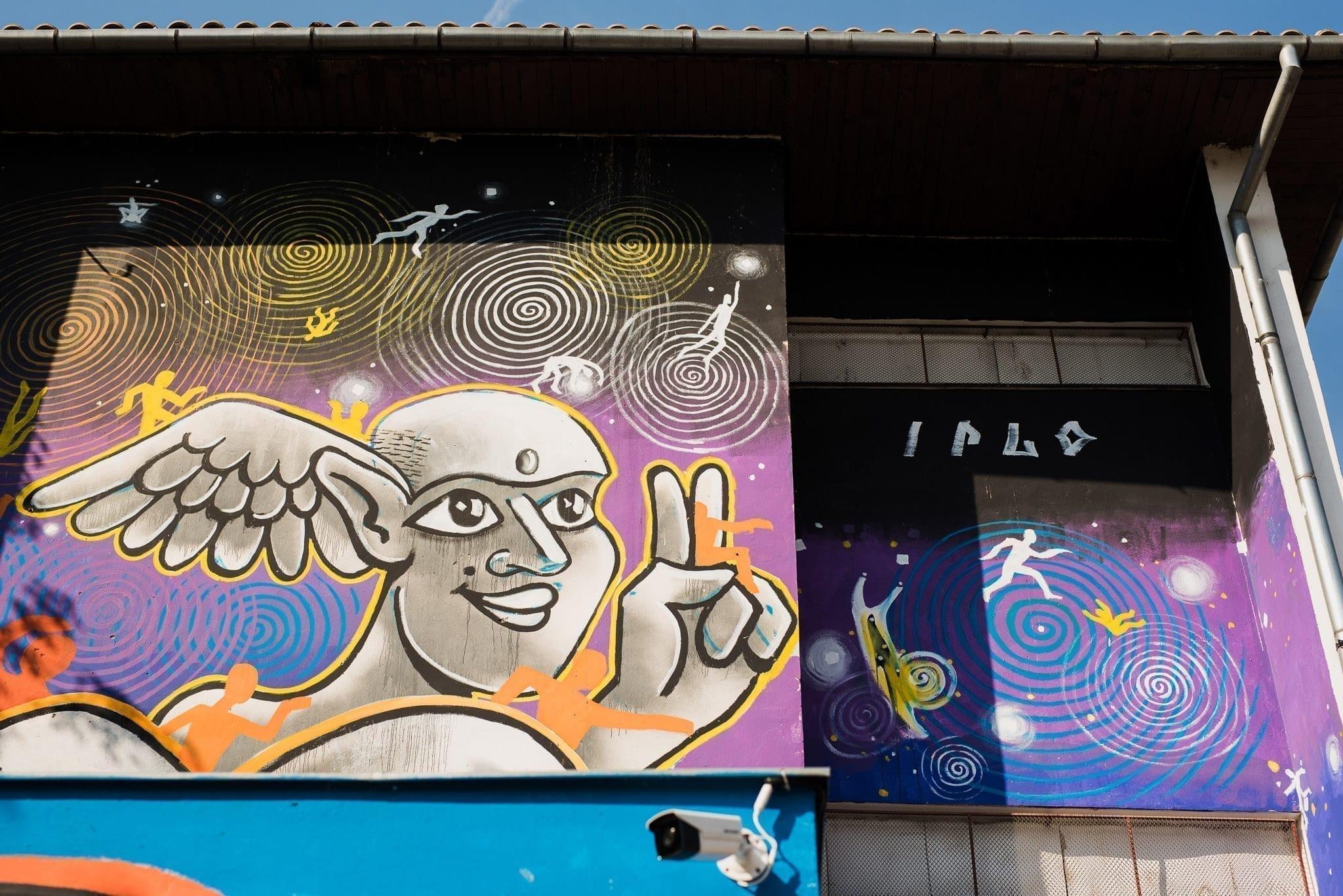IRLO Școala Gimnazială Octavian Goga Cluj Un-hidden Street Art in Romania book photo © Anita Jimbor, Un-hidden Romania
