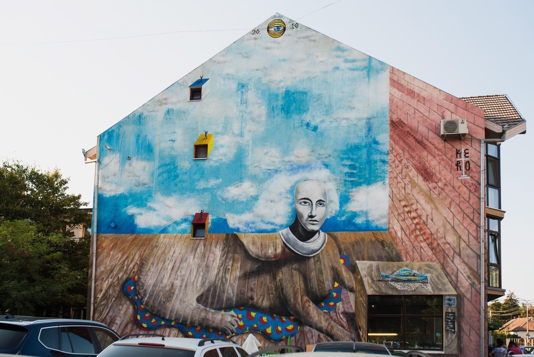 KERO / 2016 Cluj Un-hidden Street Art in Romania book photo © Anita Jimbor, Un-hidden Romania