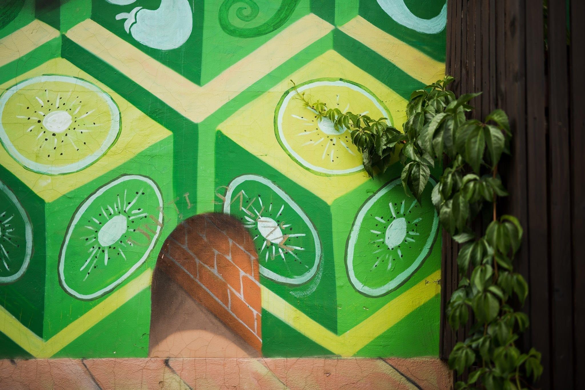 Kero & Ocu Samsara Foodhouse Cluj Un-hidden Street Art in Romania book photo © Anita Jimbor, Un-hidden Romania