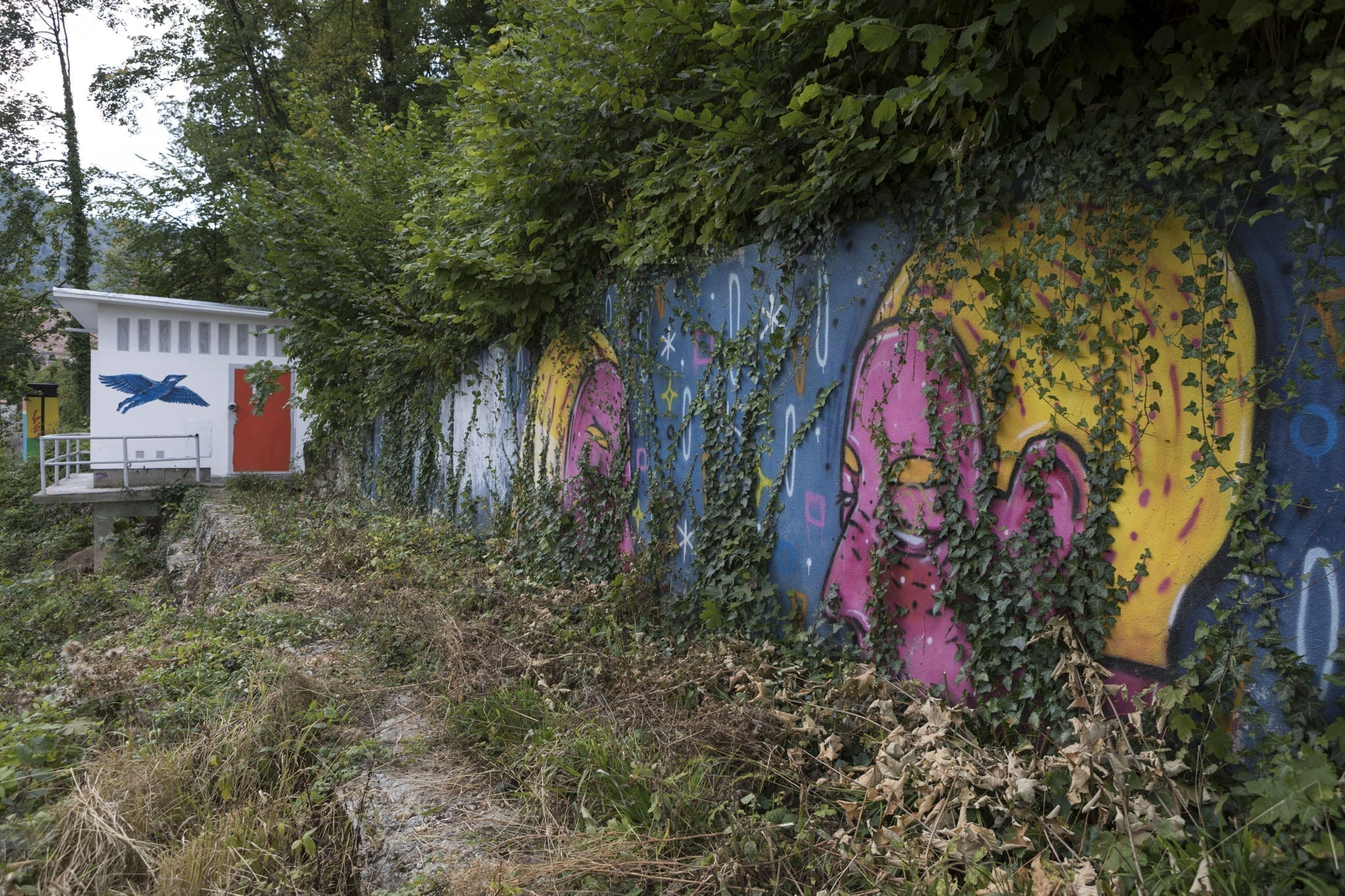 LIVIA FĂLCARU @ Amural 2017 Brasov Un-hidden street art in Romania