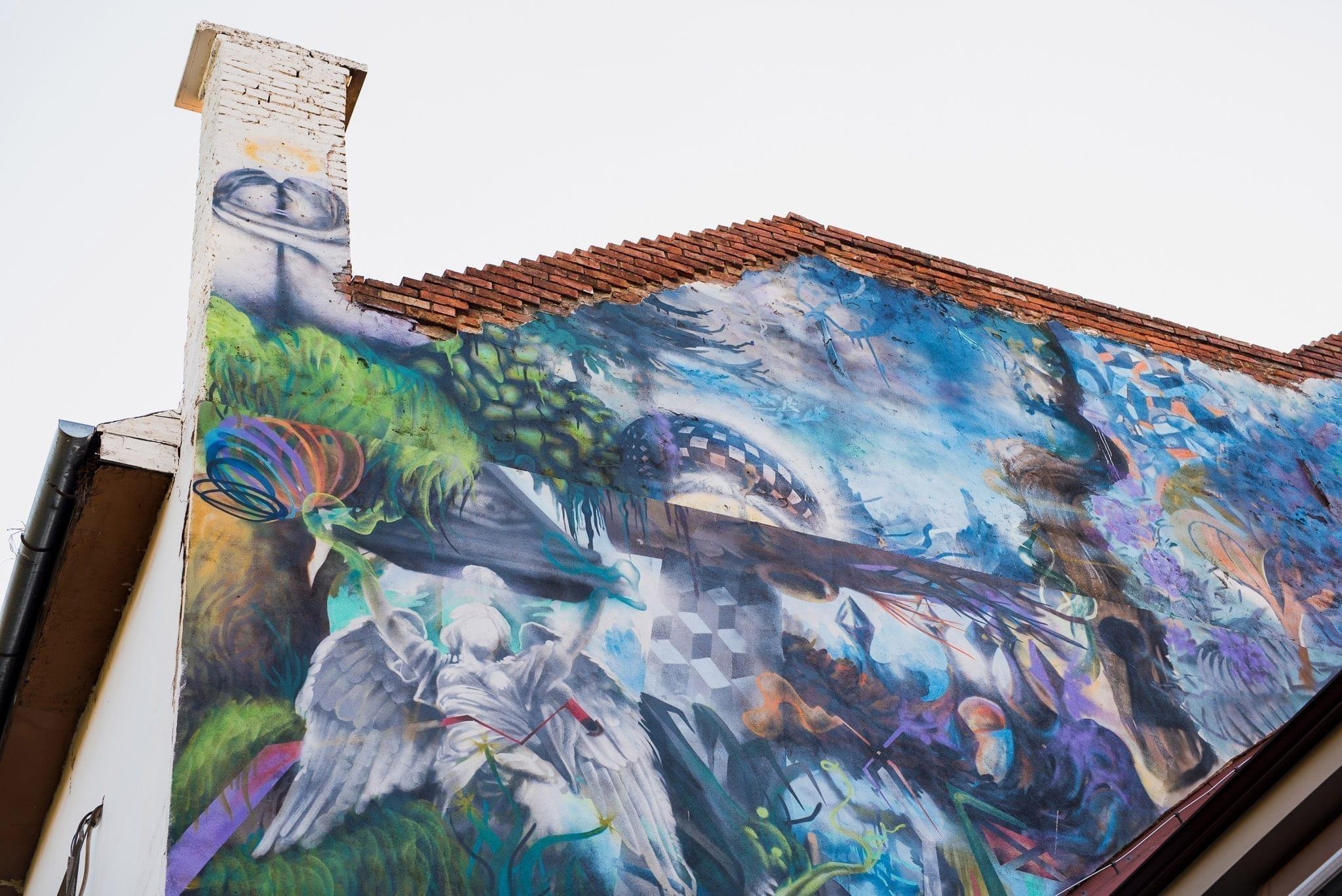 OBIE PLATON / 2015 Samsara Foodhouse / Cluj Un-hidden Street Art in Romania book photo © Anita Jimbor, Un-hidden Romania