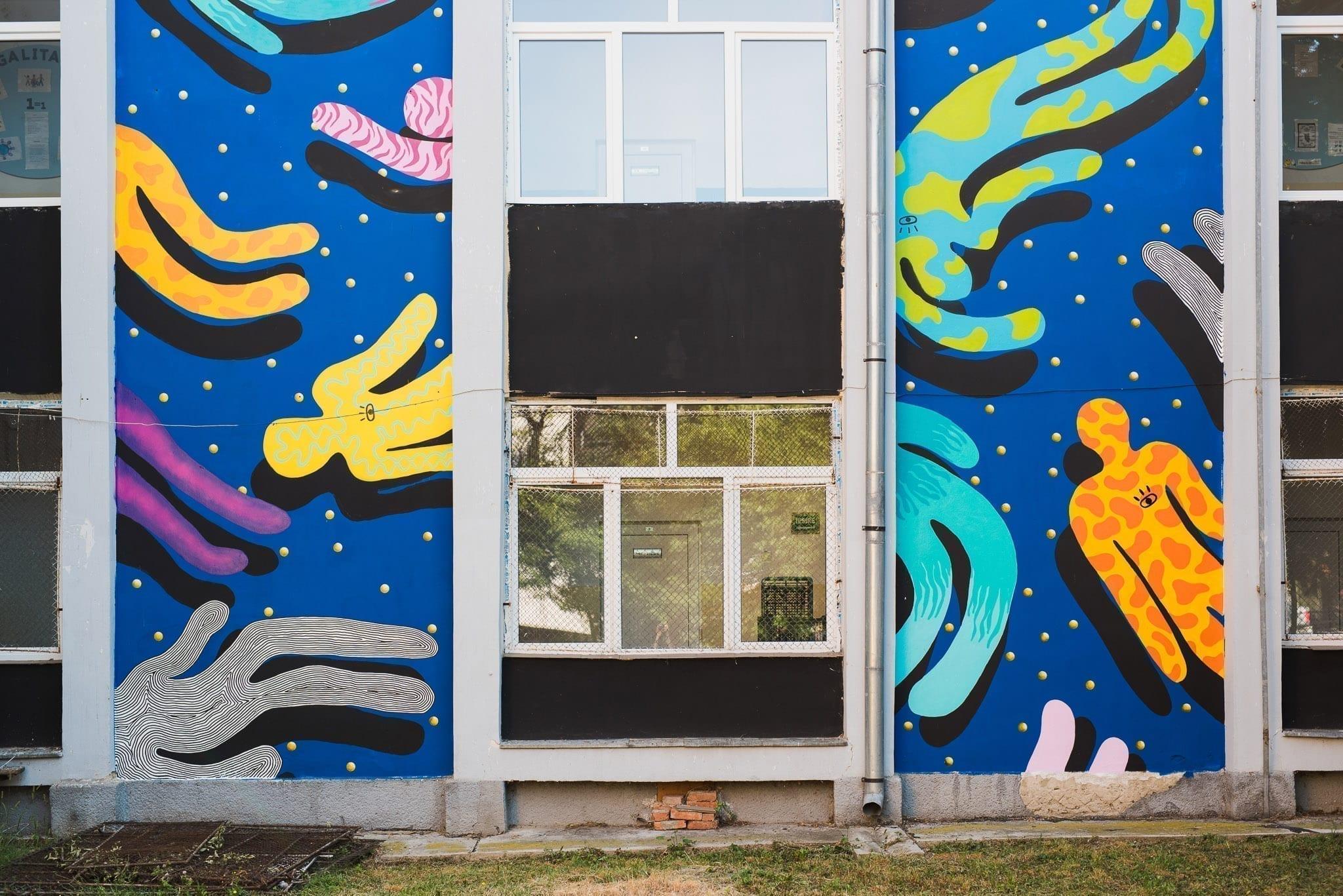 Ocu Școala Gimnazială Octavian Goga Cluj Un-hidden Street Art in Romania book photo © Anita Jimbor, Un-hidden Romania