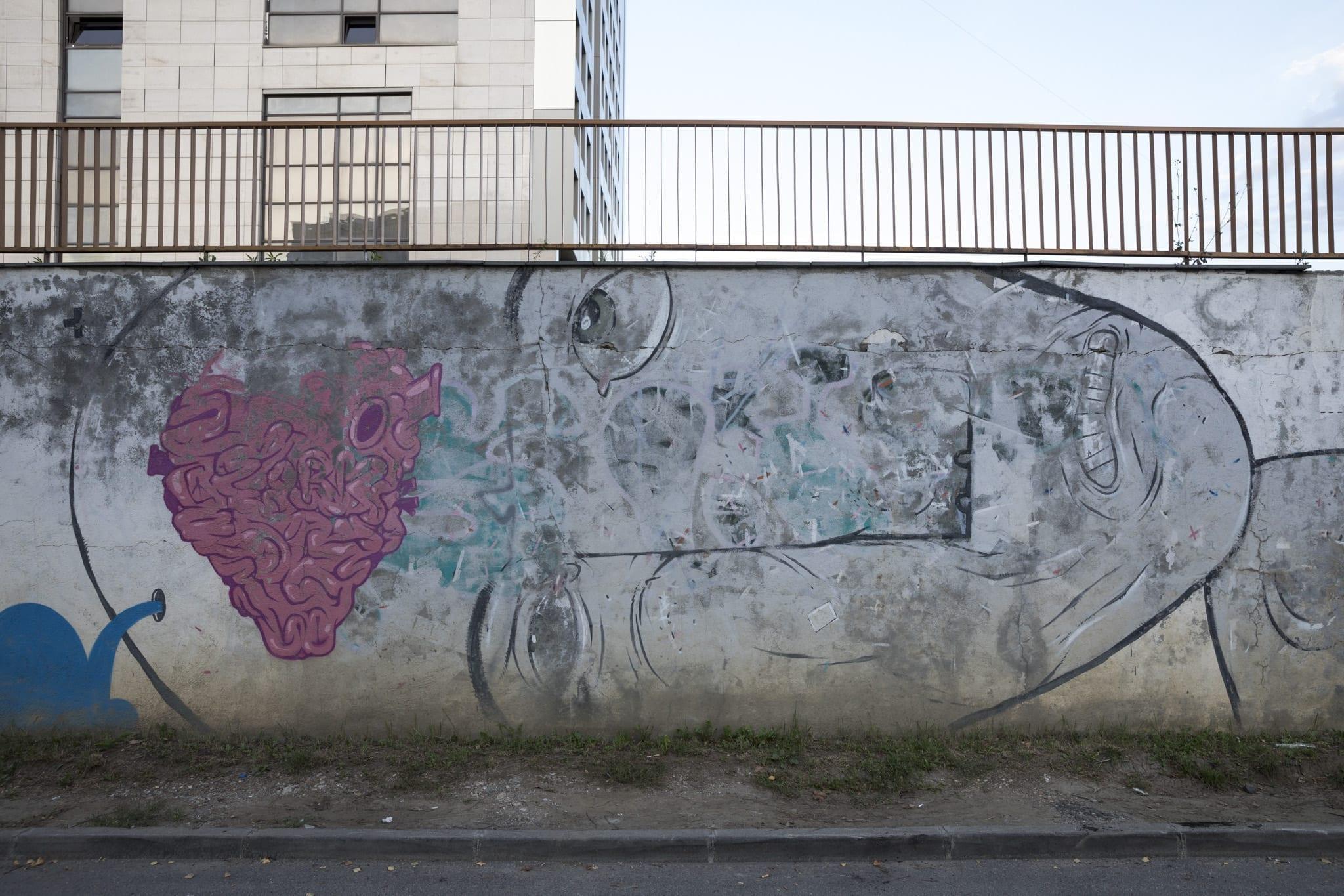 PISICA PĂTRATĂ Strada Gheorghe Șincai Brasov Un-hidden street art in Romania