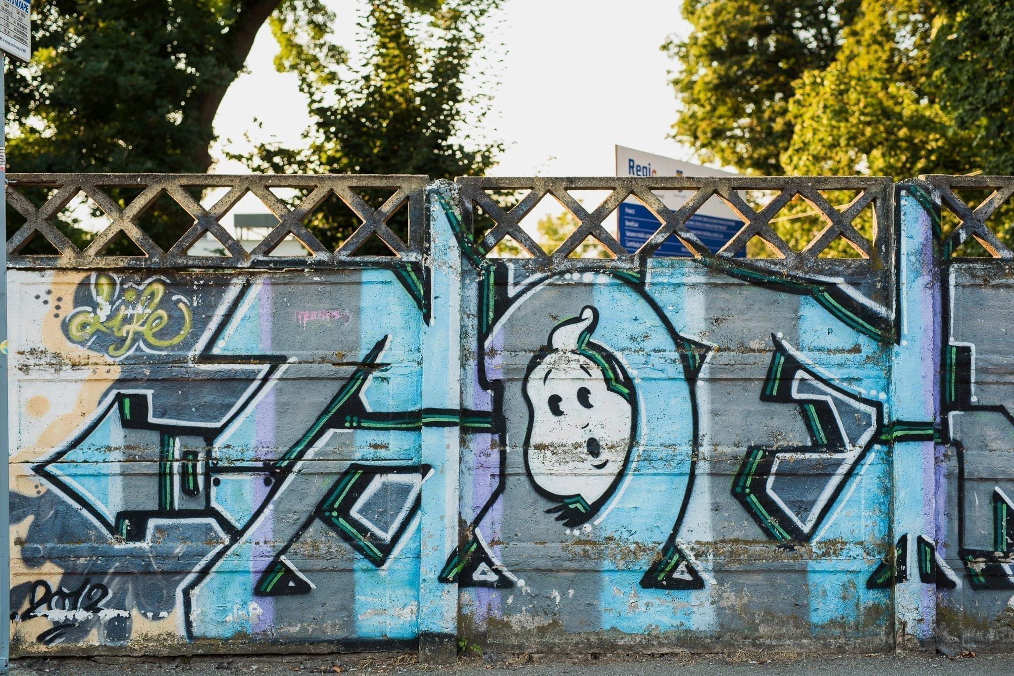VARIOUS ARTISTS Cluj Un-hidden Street Art in Romania book photo © Anita Jimbor, Un-hidden Romania