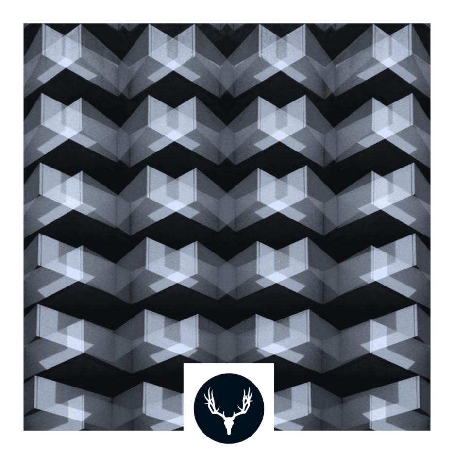 CERVIDAE RECORDINGS 047 – CL-ljud - Follow Me EP incl. remix by Nicolas Duvoisin