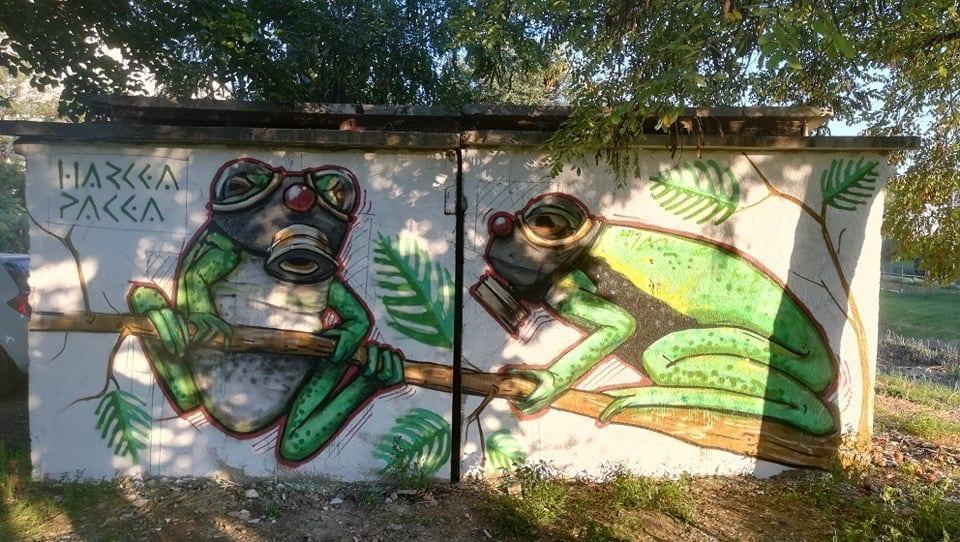 "Harcea Pacea - ""urban fauna"" / 2018"